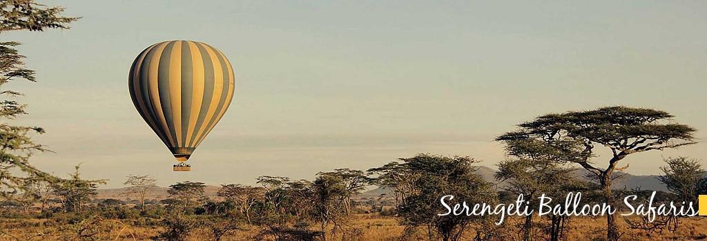 Mwanza Safari Questions