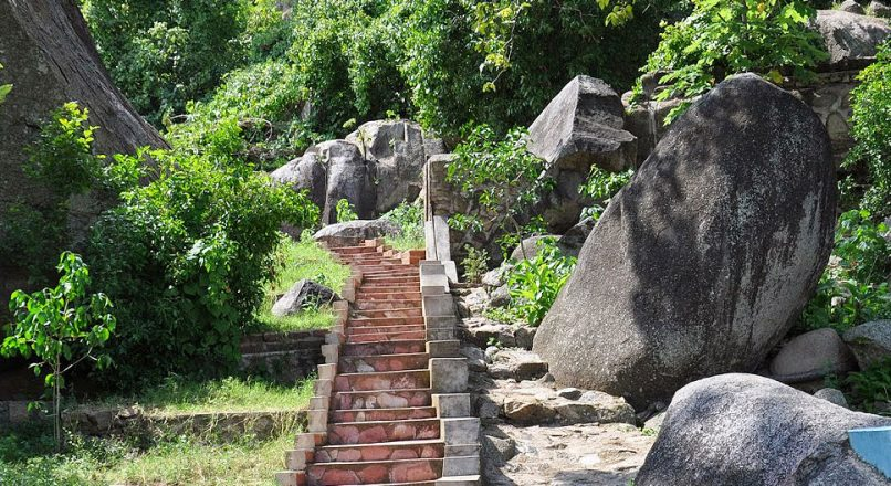 Saanane Island National Park | Mwanza Day Tours